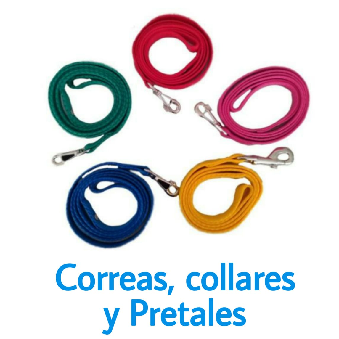 correas-collares-y-pretales