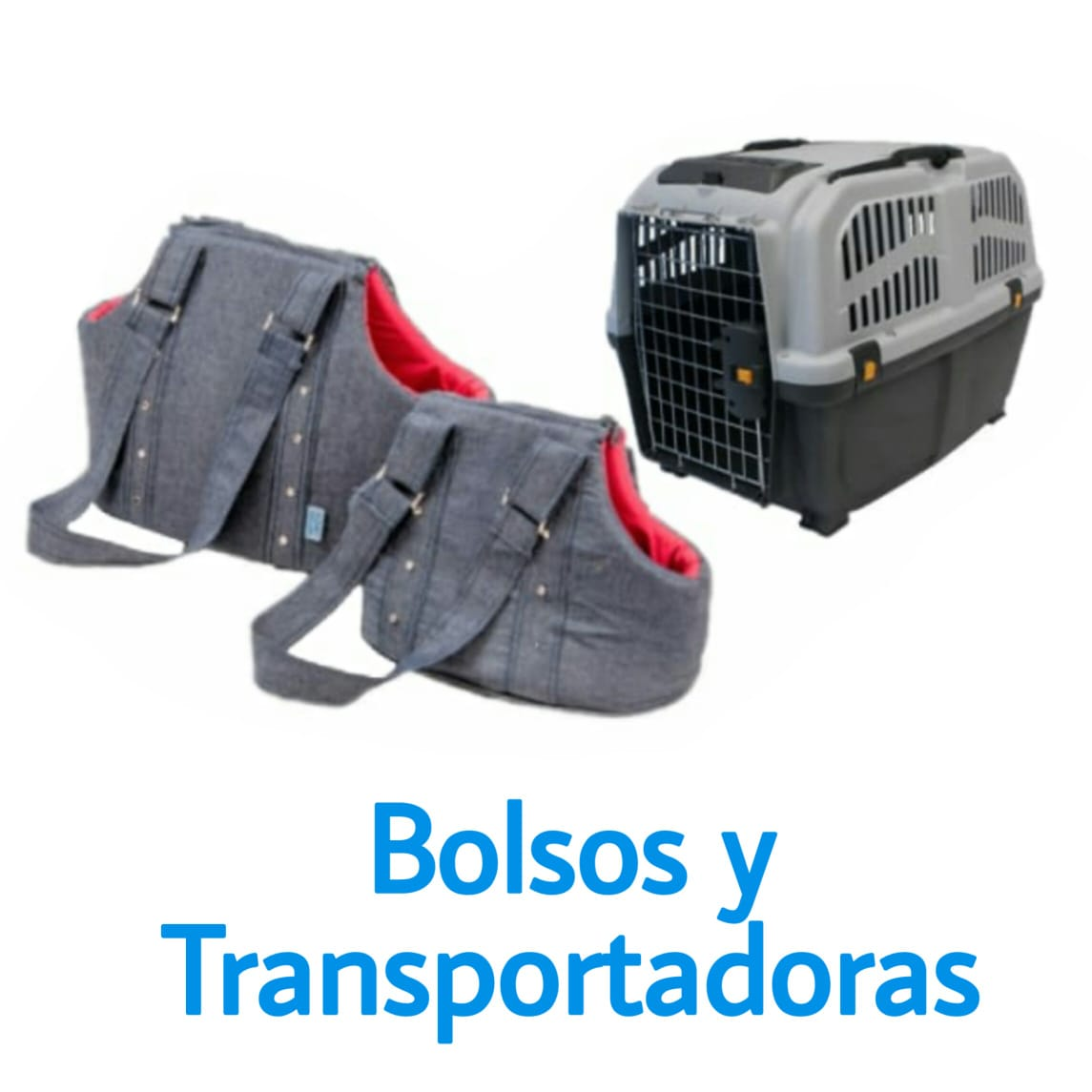 bolsos-y-transportadoras